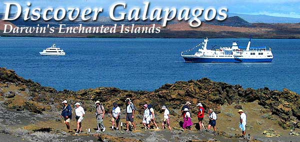Discover Galapagos - A travel guide to Galapagos cruises, tours, boats and yacht charters