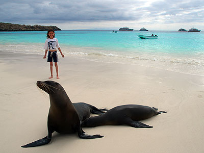 California Sea Lions and young girl, Gardner Bay, Espanola Island, Galapagos